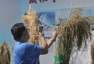 参访团在中国科学院参观 了解祖国科技新发展